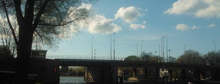 Albert Schweitzerbrug is one of Bridges in the Netherlands.