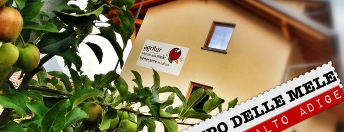 Agritur IL TEMPO DELLE MELE is one of family hotel trentino.