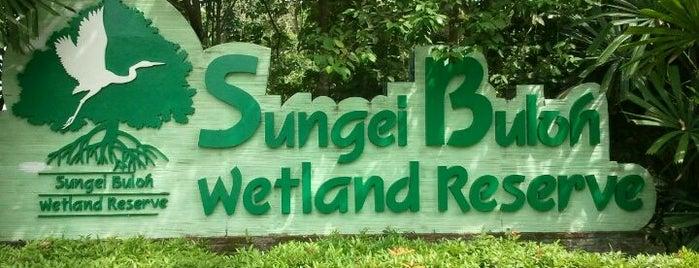 Sungei Buloh Wetland Reserve is one of Trek Across Singapore.