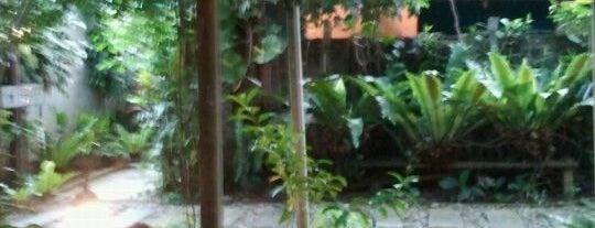 Aunty Aini's Garden Cafe is one of Best Foods & Restaurants in Nilai Area.
