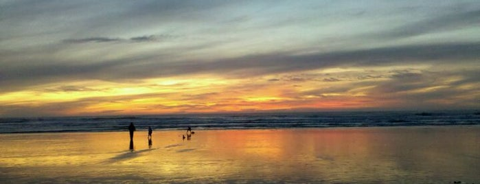 Ocean Beach is one of Must-Visit Great Outdoors in San Francisco.
