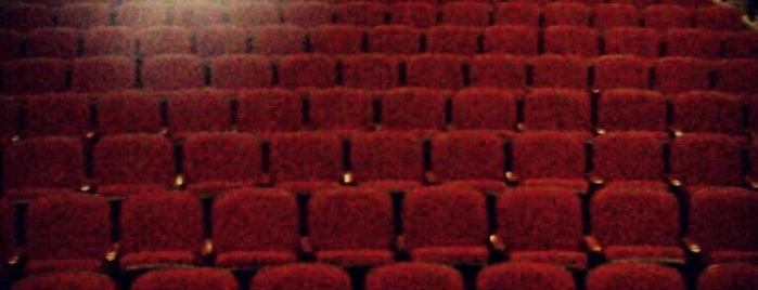 Lakeland Community Theatre is one of Lakeland Business Leaders.