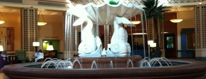 Dolphin Lobby Fountain is one of Lotusphere.