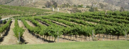 Orfila Vineyards and Winery is one of USA San Diego.