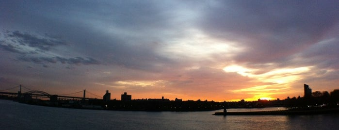 Carl Schurz Park is one of Least Known but Most Rewarding Places in NYC.