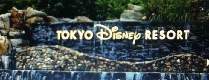 Tokyo Disney Resort is one of 2009.03 Kanagawa Tiba Tokyo.