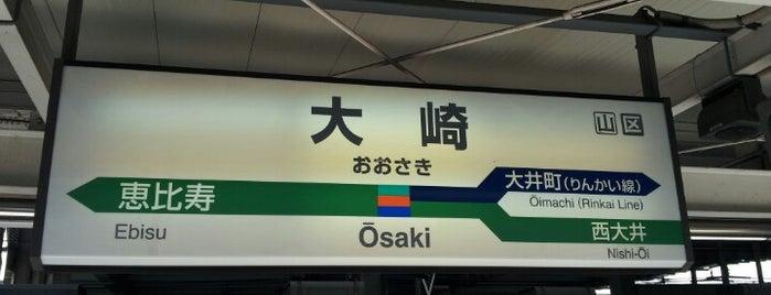 JR 湘南新宿ライン 大崎駅 is one of JR線の駅.