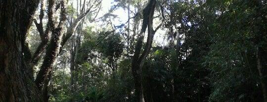 Parque da Biquinha is one of Família Poppes.
