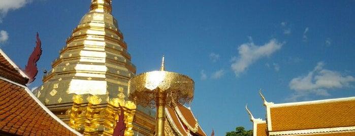 Guide to the best spots Chiang Mai|เที่ยวเชียงใหม่