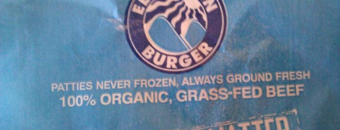 Elevation Burger is one of Vegan Choices.