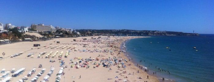 Praia da Rocha is one of Algarve.