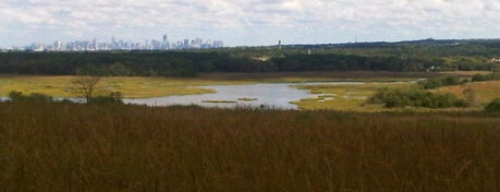 Sneak Peak at Freshkills Park is one of All-time faves with mii @AryatiNP.