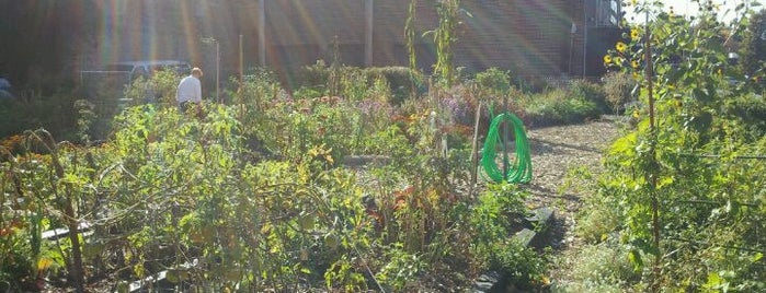 Schreiber Park is one of Community Gardens in the Parks!.