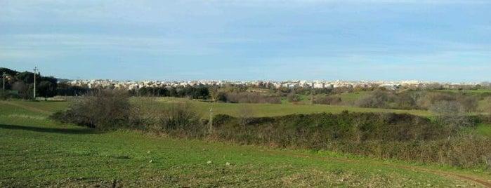 Parco Regionale dell'Appia Antica is one of La Dolce Vita - Roma #4sqcities.