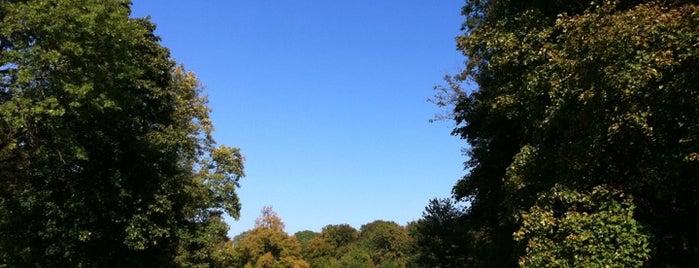 Englischer Garten is one of Munich And More.