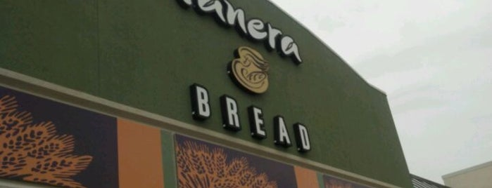 Panera Bread is one of Must-visit Food in Rochester.