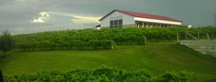 Cedar Ridge Winery & Distillery is one of Must-visit Food in Cedar Rapids.