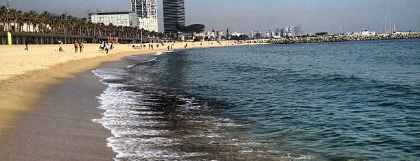 Platja de la Barceloneta is one of Barcelona.