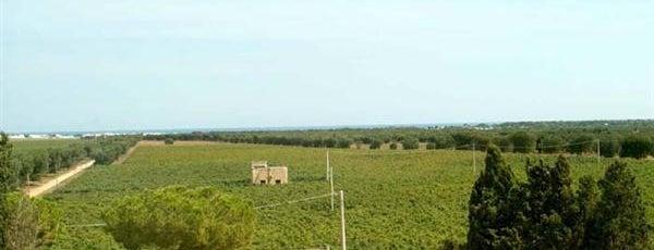 Azienda Agricola Duca Carlo Guarini is one of Cantine Aperte Puglia 2012.