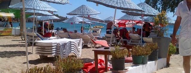 Muzo Beach Club is one of cunda.