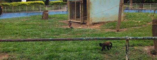 Zoológico Municipal is one of melhor de Moc.