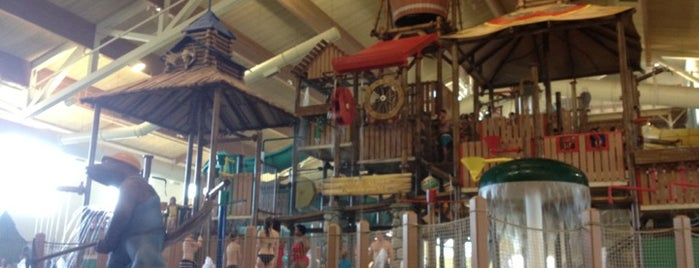 Great Wolf Lodge is one of Hotels.