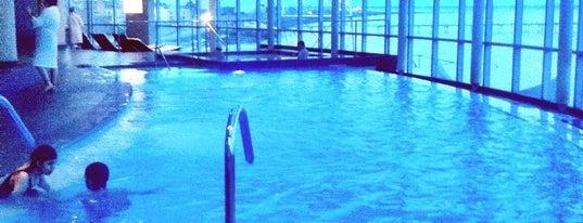 Hotel y Casino Dreams Punta Arenas is one of Restaurantes Visitados.