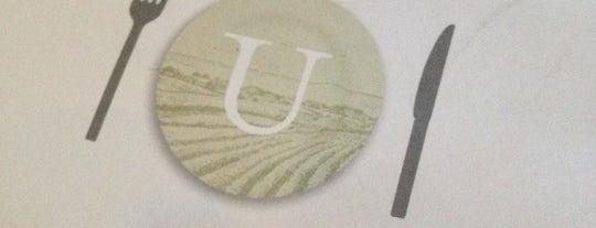 Urbane is one of Favorite Seattle Restaurants.