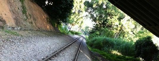Rifle Range Road Railway Trackbed is one of Trek Across Singapore.