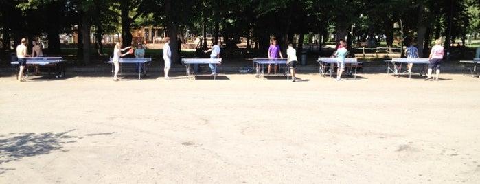Настольный теннис is one of Парк Горького.