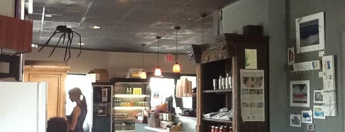 Must-visit Coffee Shops in Charleston