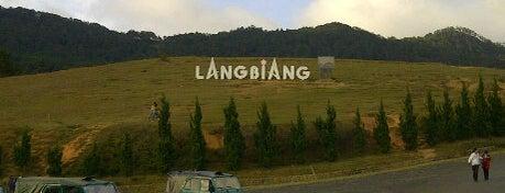 LangBiang Hill is one of Đà Lạt.