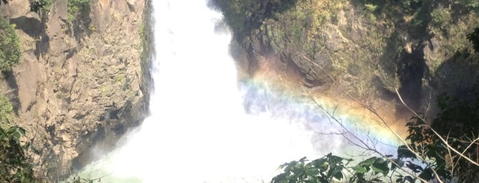数鹿流ヶ滝 is one of 日本の滝百選.