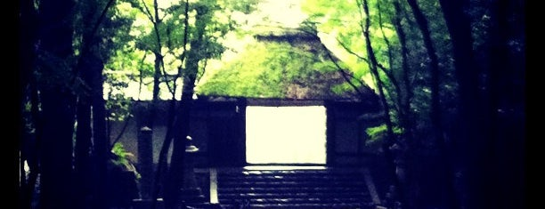 Honen-in is one of Free stuff Kyoto.