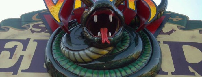 Viper is one of ROLLER COASTERS.