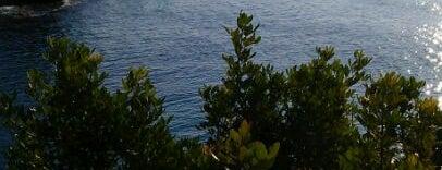 Cala Llobeta is one of Dive sites.