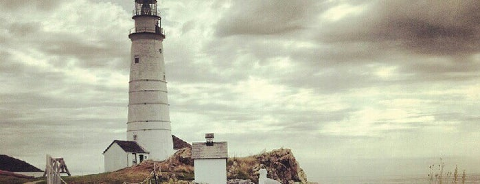 Boston Light House is one of Bean Town Shops & To-Dos.
