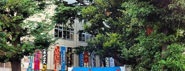 東京都立 目黒高等学校 is one of 都立学校.