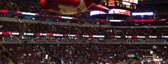 United Center is one of Sport Staduim.