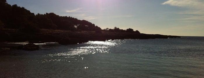 Porto Selvaggio is one of ITALY BEACHES.