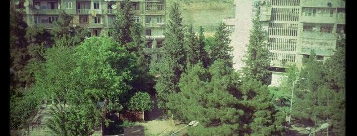 Tamarashvili Street is one of Streets.