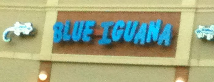Blue Iguana is one of Must-visit Food in Chantilly.