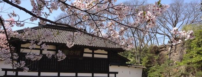 小諸城址 懐古園 is one of Japan.