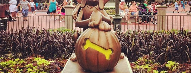 The Hub is one of Walt Disney World.