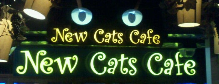 New Cats Cafe is one of A local's guide: 48 hours in Brooklyn, NY.