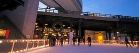 The Standard Ice Rink is one of Top Ice Skating Rinks in NYC.
