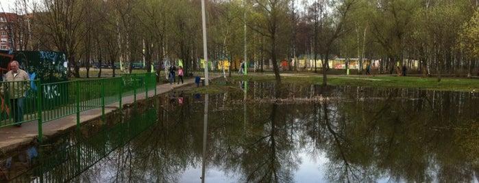 Пруд в городском парке is one of Лобня.