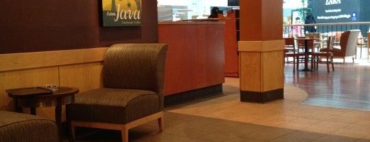 Starbucks is one of My Doha..