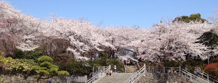 Asukayama Park is one of 景色◎.