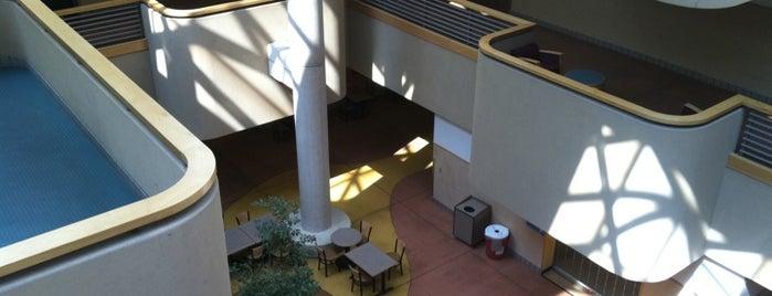 Dane Smith Hall is one of Major Academic Buildings.
